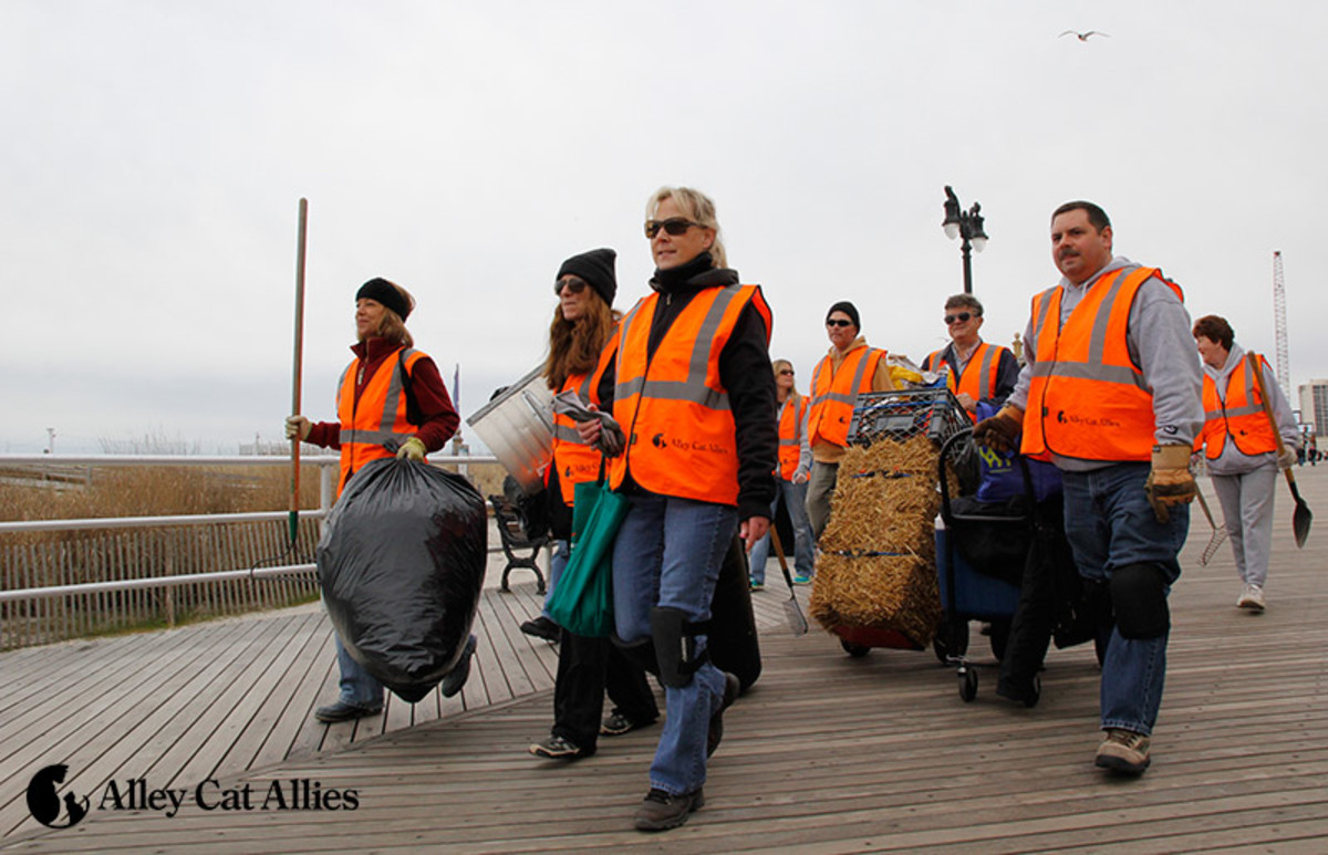 Volunteers, and members of Alley Cat Allies pick up trash at the home of the boardwalk cats of Atlantic City, New Jersey.