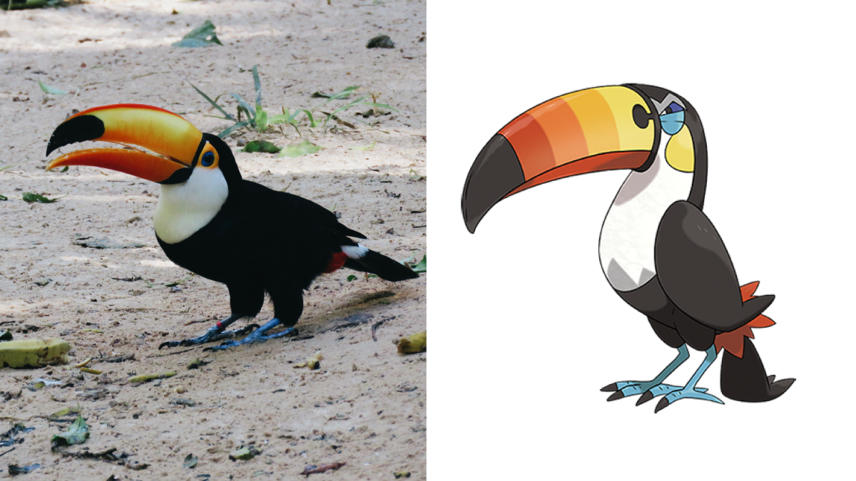 exotic-pets-that-look-like-pokemon