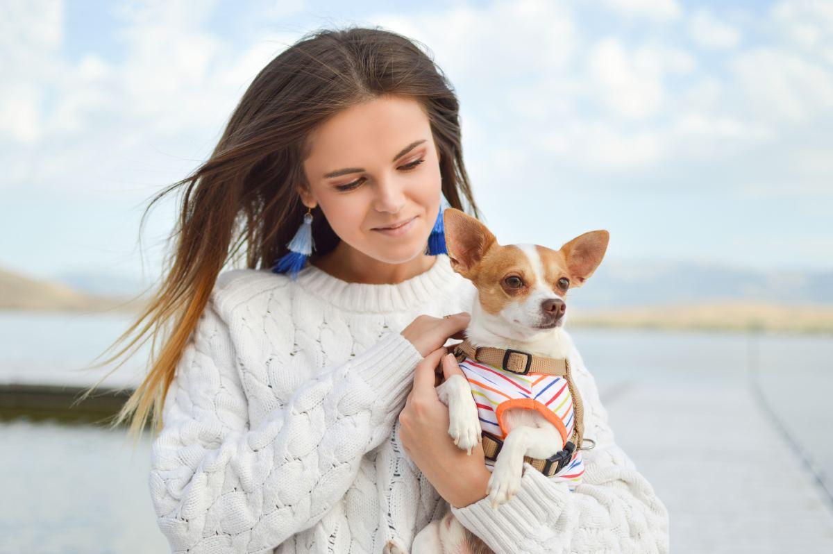 Why should you get a pet?  So you can make new friends and socialize!