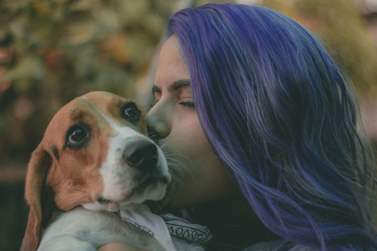 Calm arrivals and departures are key to treating separation anxiety in dogs.