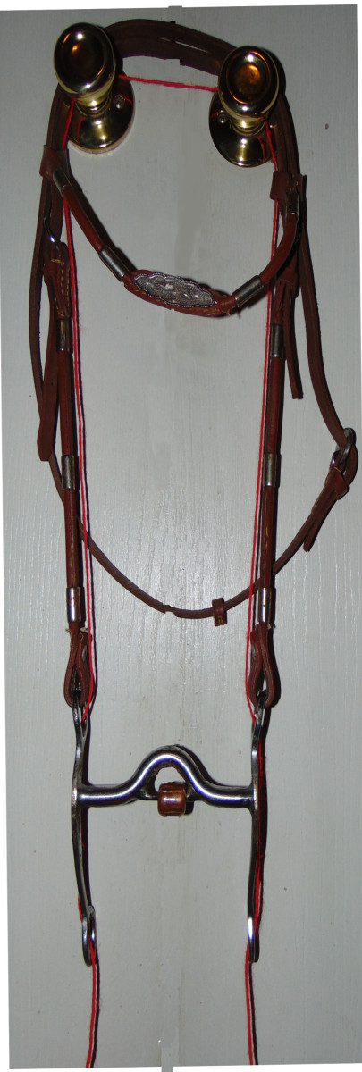 Anti buck string on bridle.