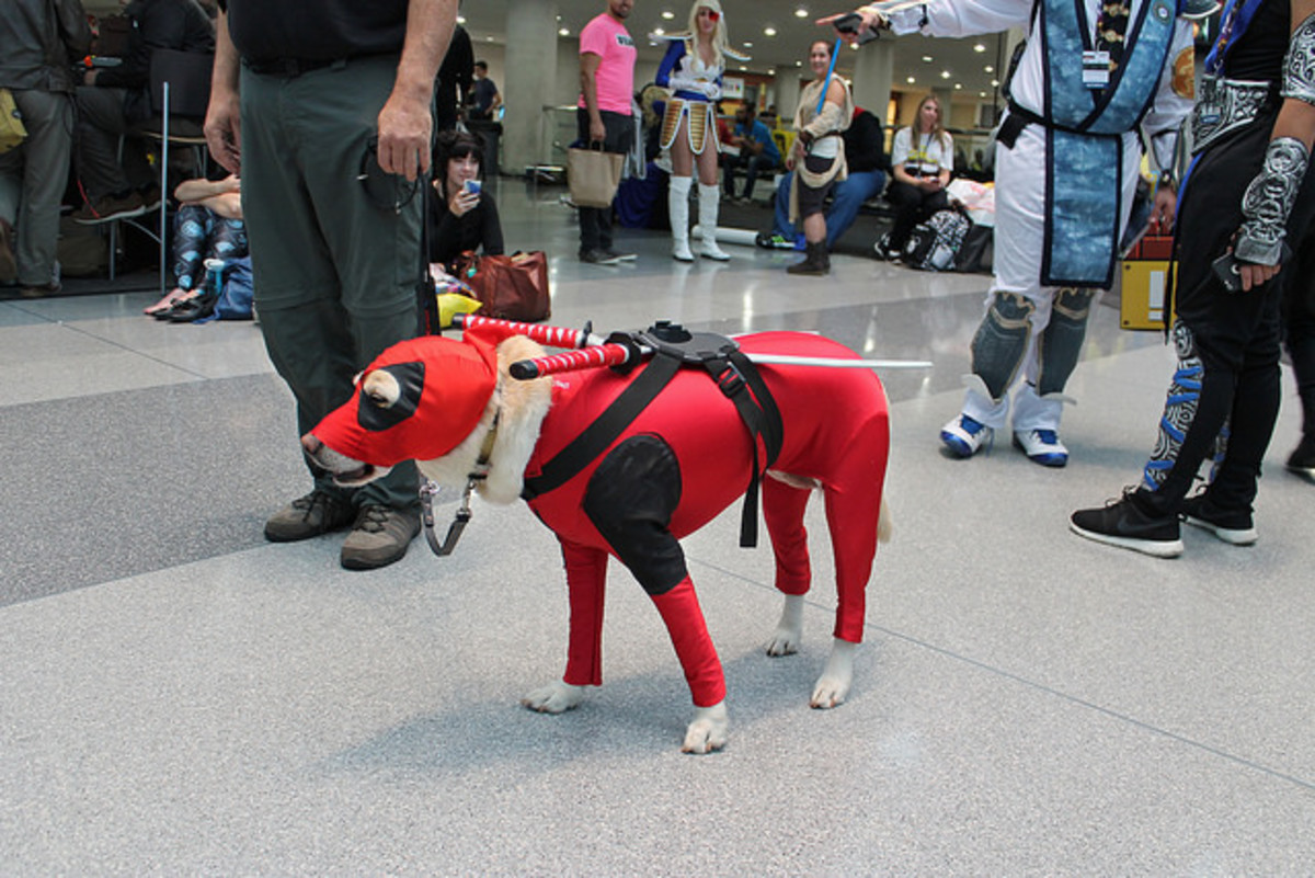 Deadpool is not as perfect a name, but may suit your dog just fine.