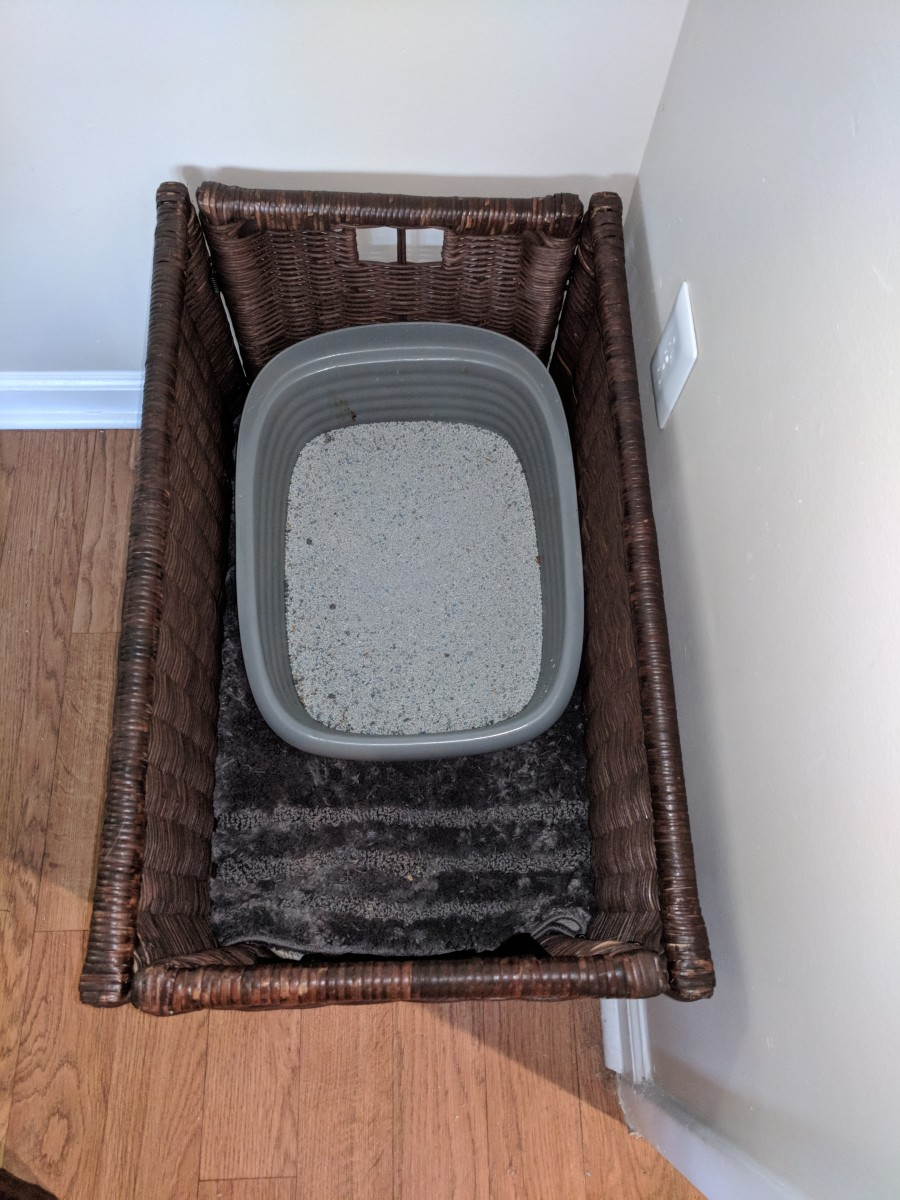 Here's what the inside of the box looked like with the carpet and the litter box in place!