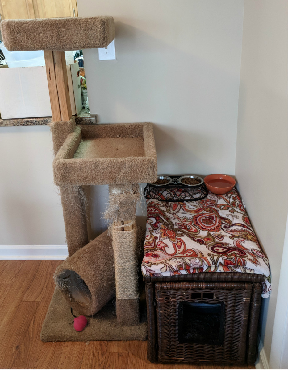 And the finished product, all set in place. My cat tree needs a little love so that is going to be my next project to get the cat corner looking good and up to snuff!