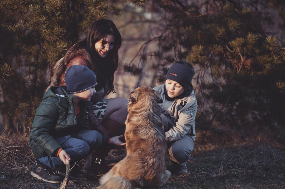 5-tips-for-hiking-with-dogs