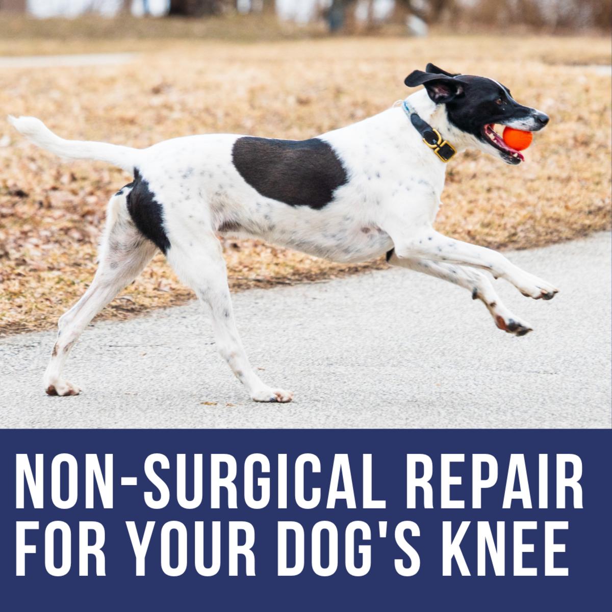Non-Surgical Repair