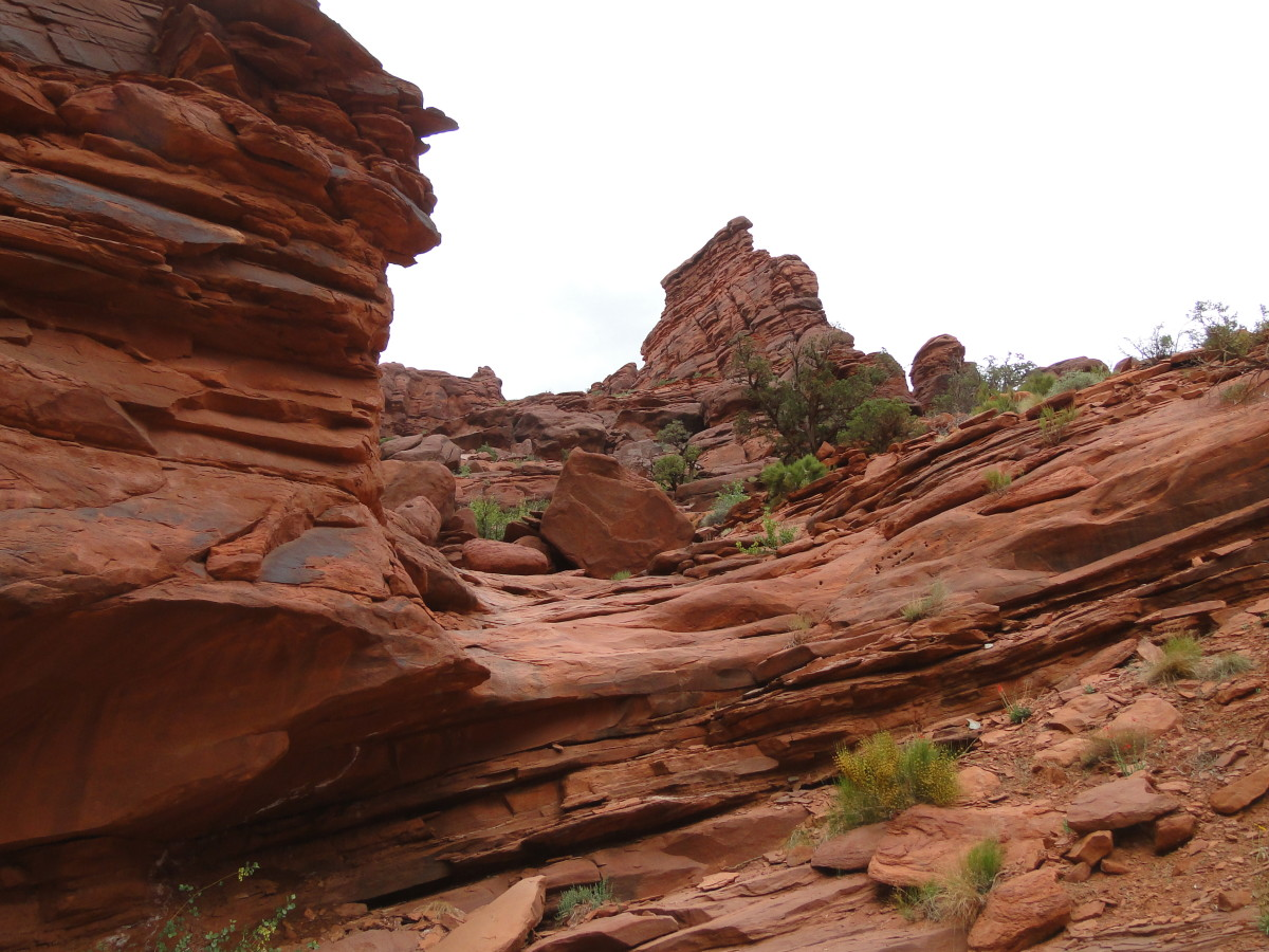 The beautiful red cliffs welcomed us back to the beginning of The Onion Creek Trail.