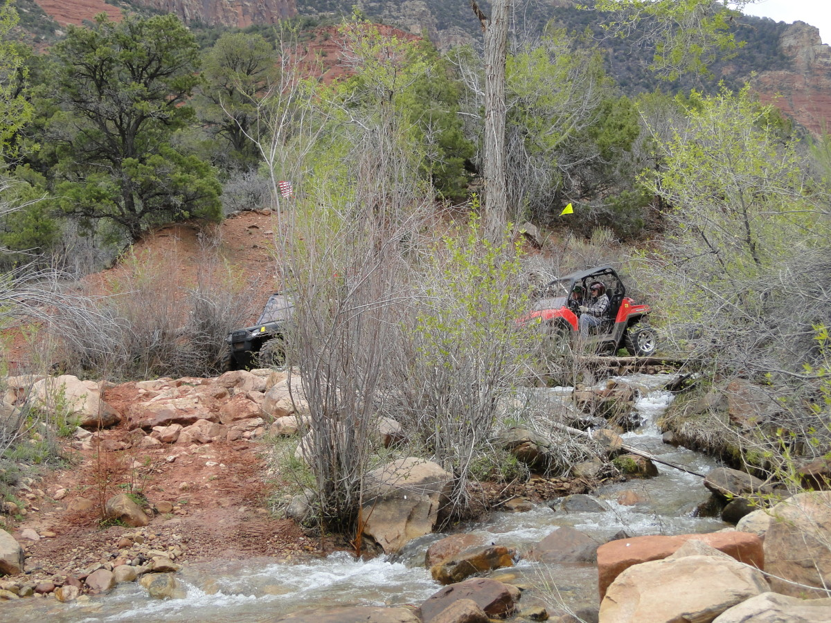 Each time the trail took a turn, it seemed to go across Onion Creek one more time.