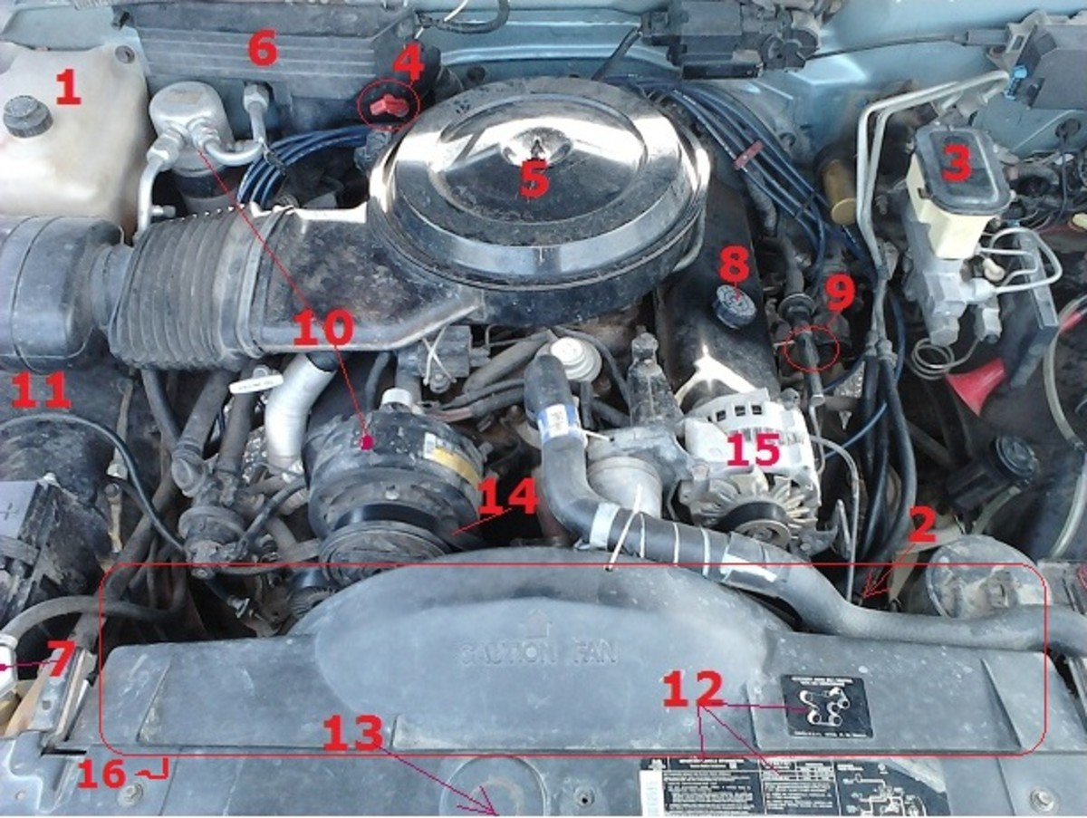 ladies, what\u0027s under your hood?! axleaddictUnder The Hood On The Driver S Side Of The Vehicle See Diagram Below #12