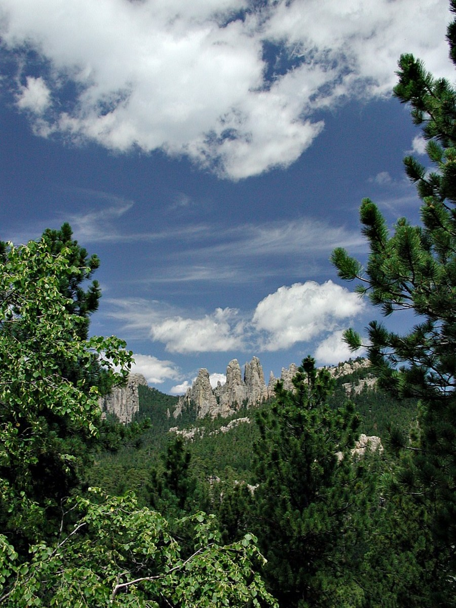 Custer State Park is one of the best RV road trip destinations because it is located in the Black Hills and offers many activities.