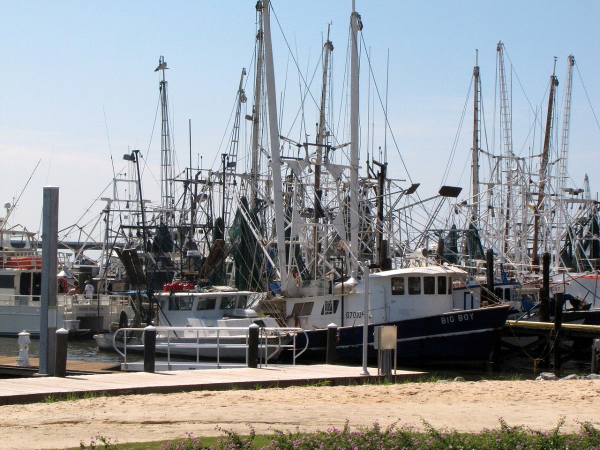 Visit the Mississippi Gulf Coast shrimp boats when you hit another great RV road trip destination.