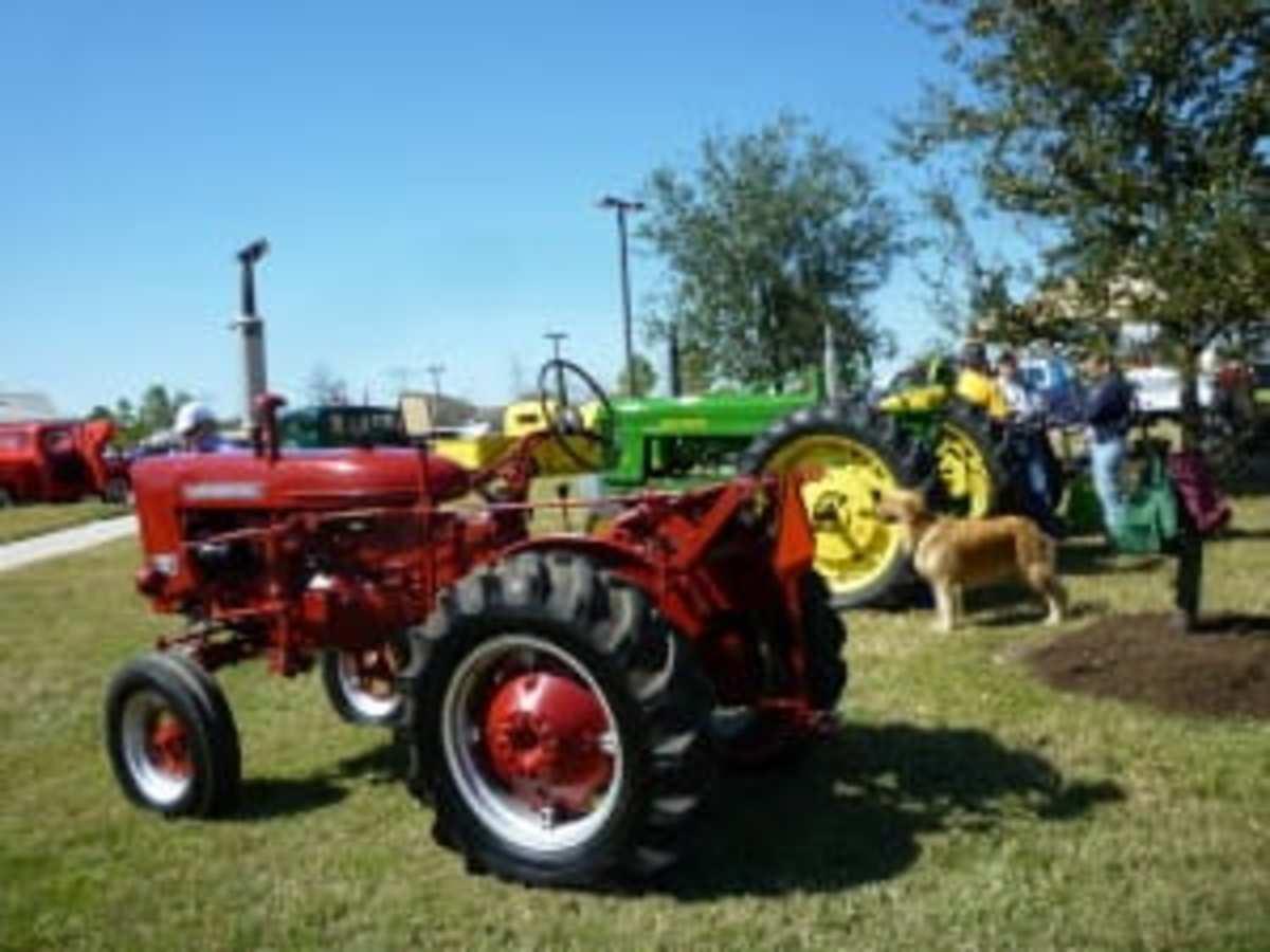 Some vintage tractors on display