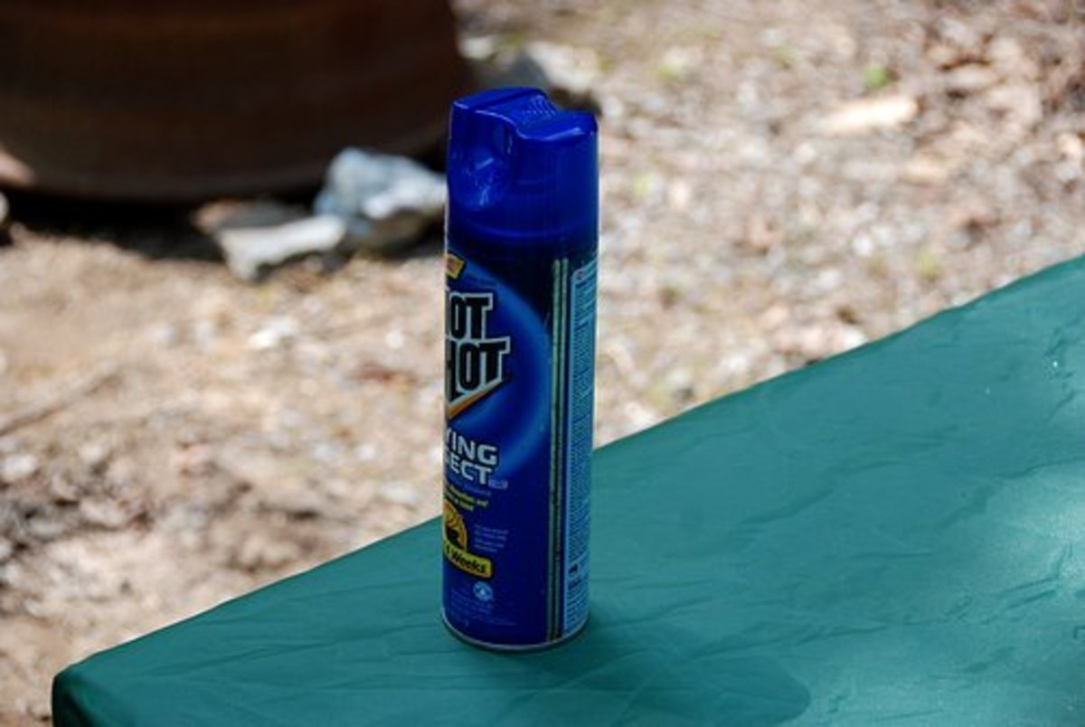 Regardless of where you camp, always keep a can of bug spray handy.