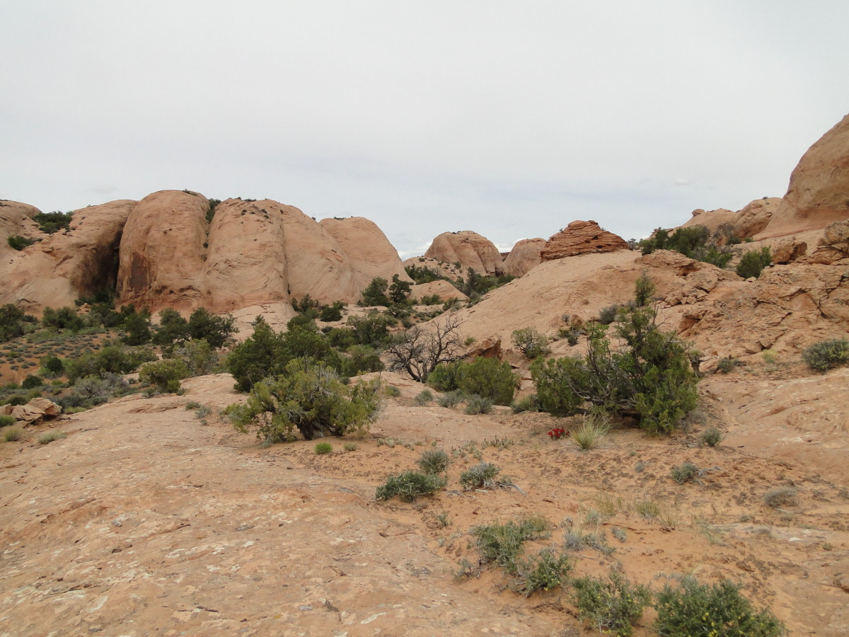 The beautiful rock formations along the Fins & Things Trail.