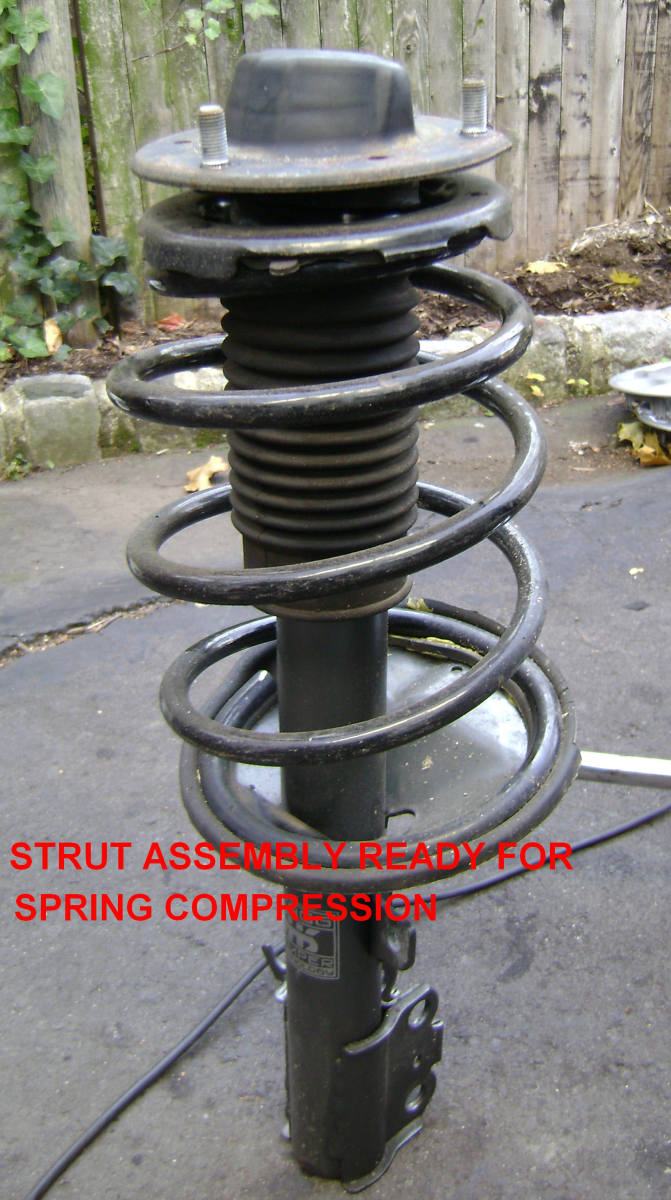 Strut assembly, removed