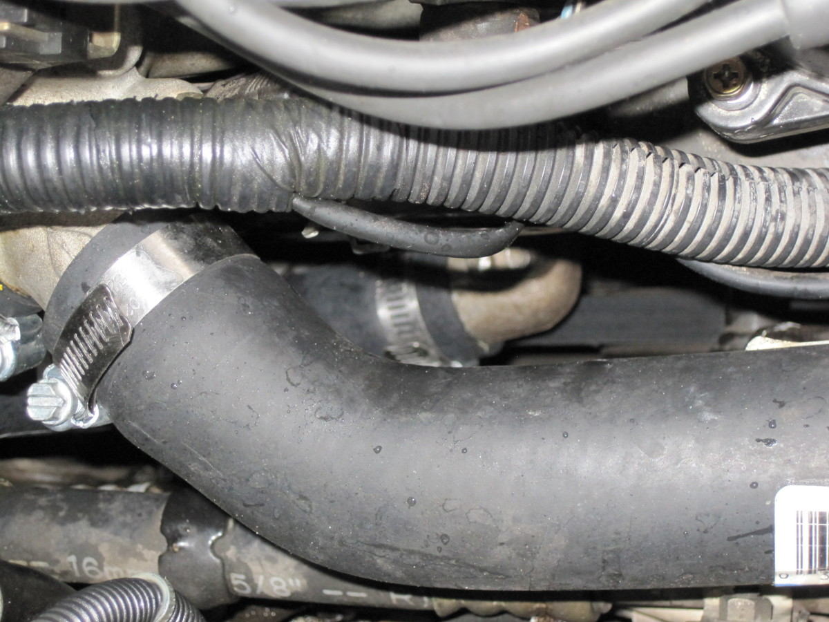 This photo shows the top radiator hose in the foregroung and is taken from the passenger side of the vehicle looking over the fender.