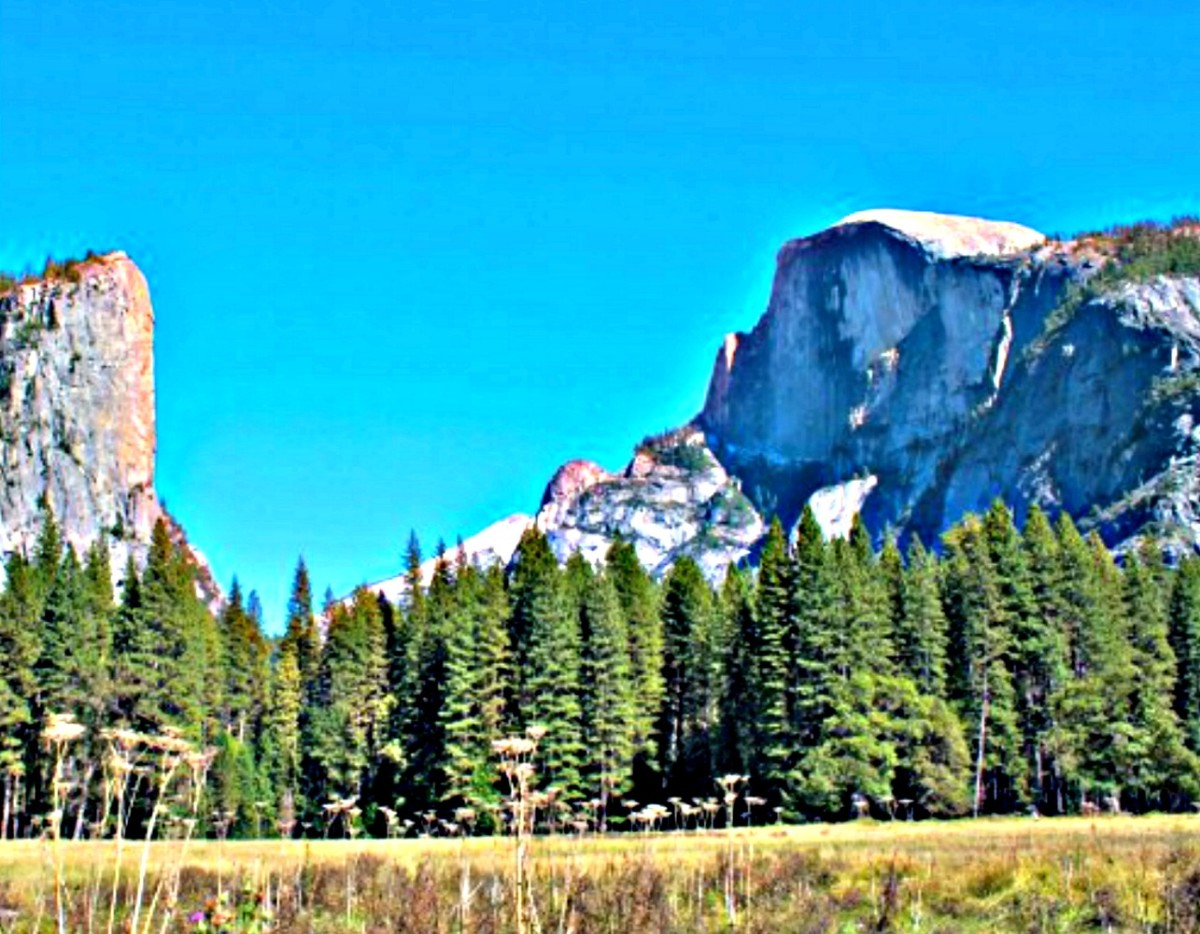 National Park Passes make staying at places such as Yosemite National Park cost effective.
