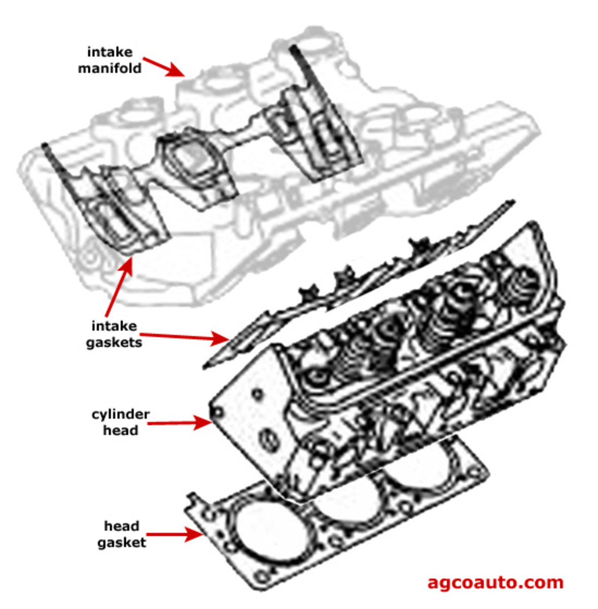 Diagram Showing Intake Gasket Location