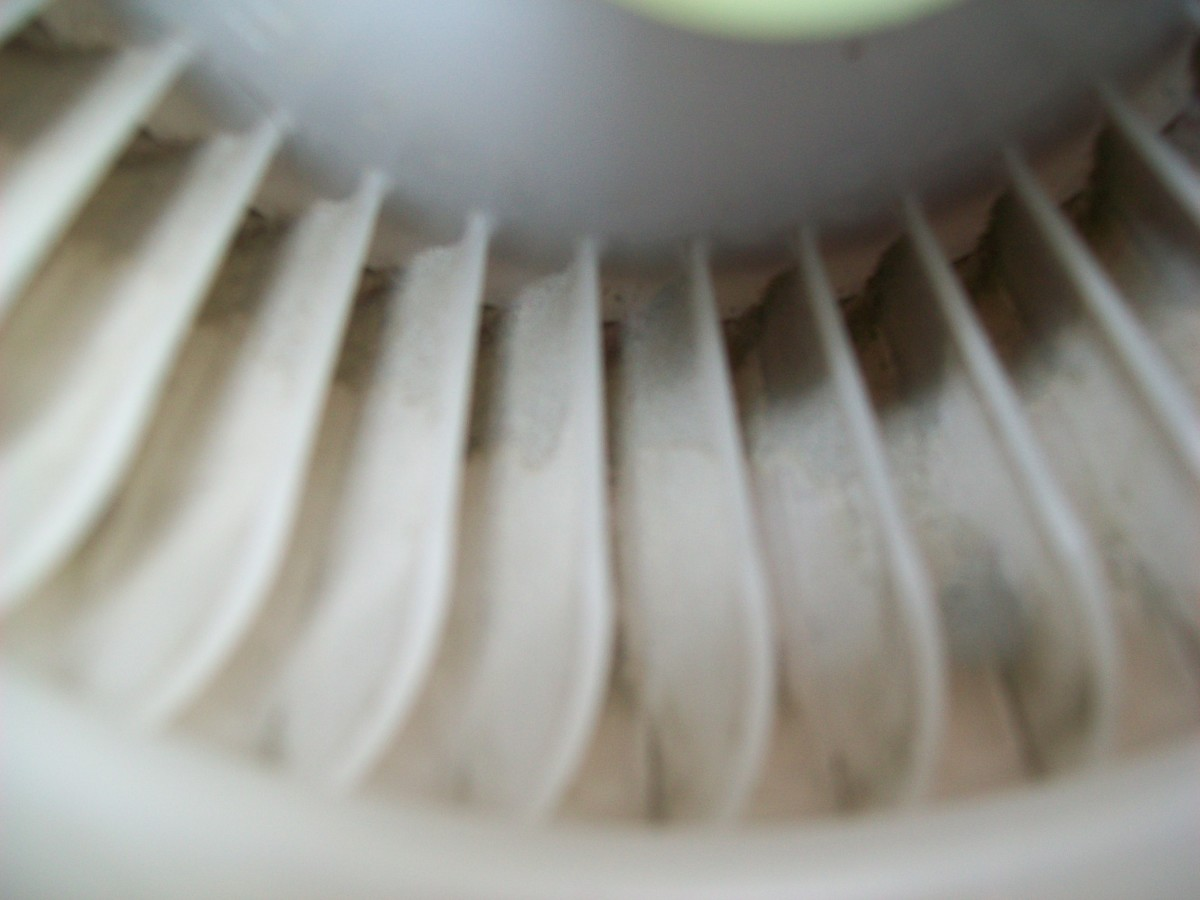 A deeper look inside the cooling fan, some buildup of dirt on the fins but nothing that will prevent it from doing its job.
