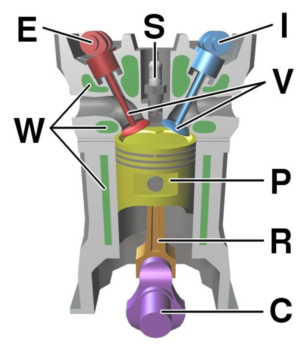 A spark plug and surrounding components:  C: Crankshaft E: Exhaust camshaft I: Inlet camshaft P: Piston R: Connecting rod S: Spark plug V: Valves. Red: exhaust, Blue: intake W: Cooling water duct