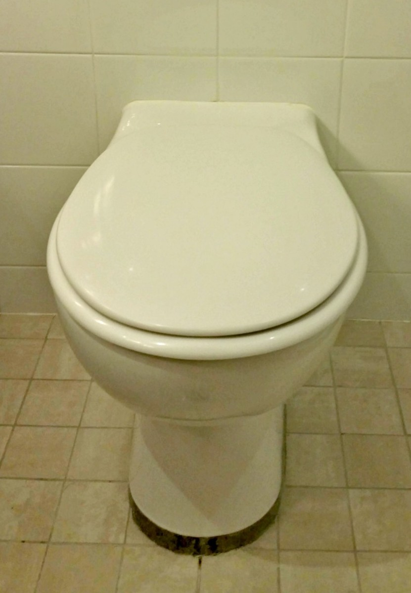 Check the areas around  and behind the bottom of your RV's toilet for water.