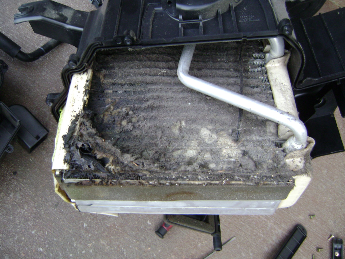 Ruined evaporator core