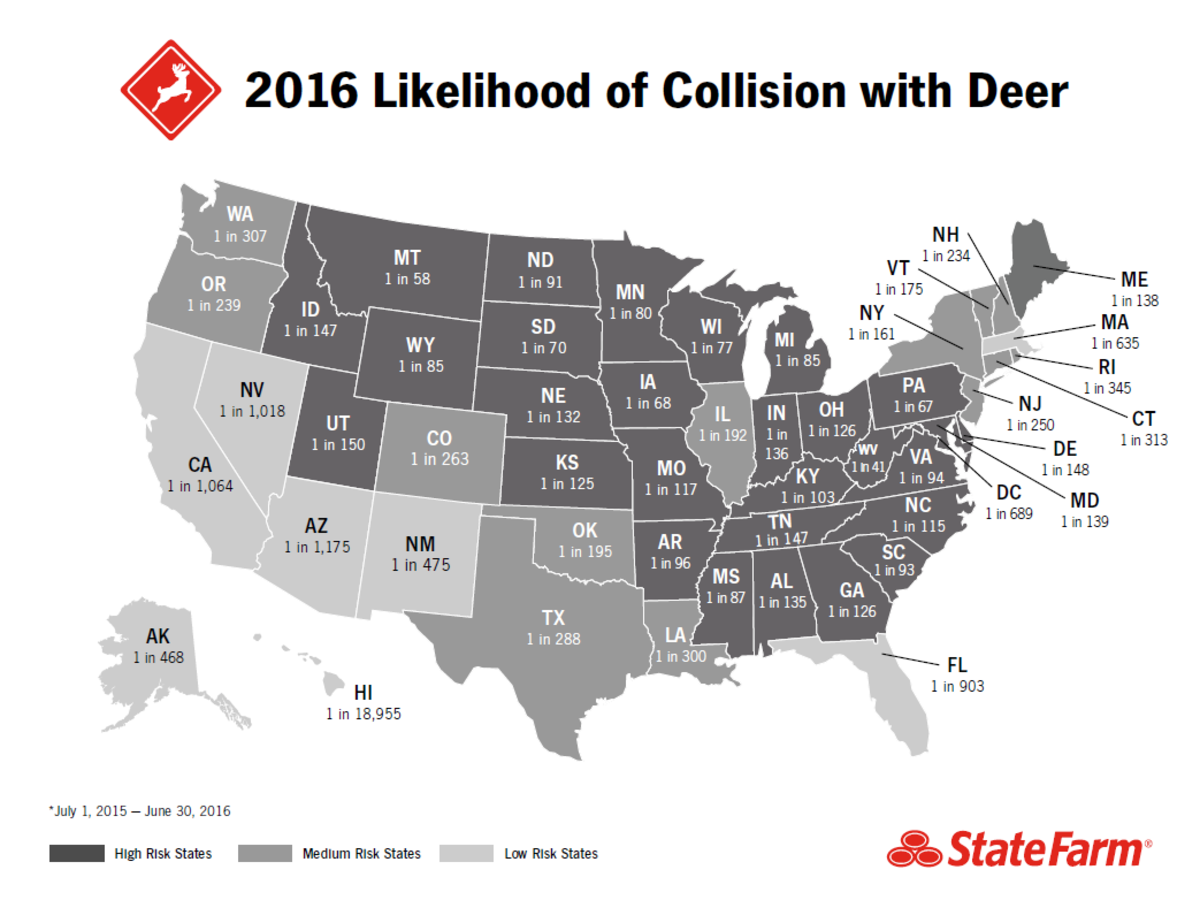 how-to-avoid-deercar-collisions