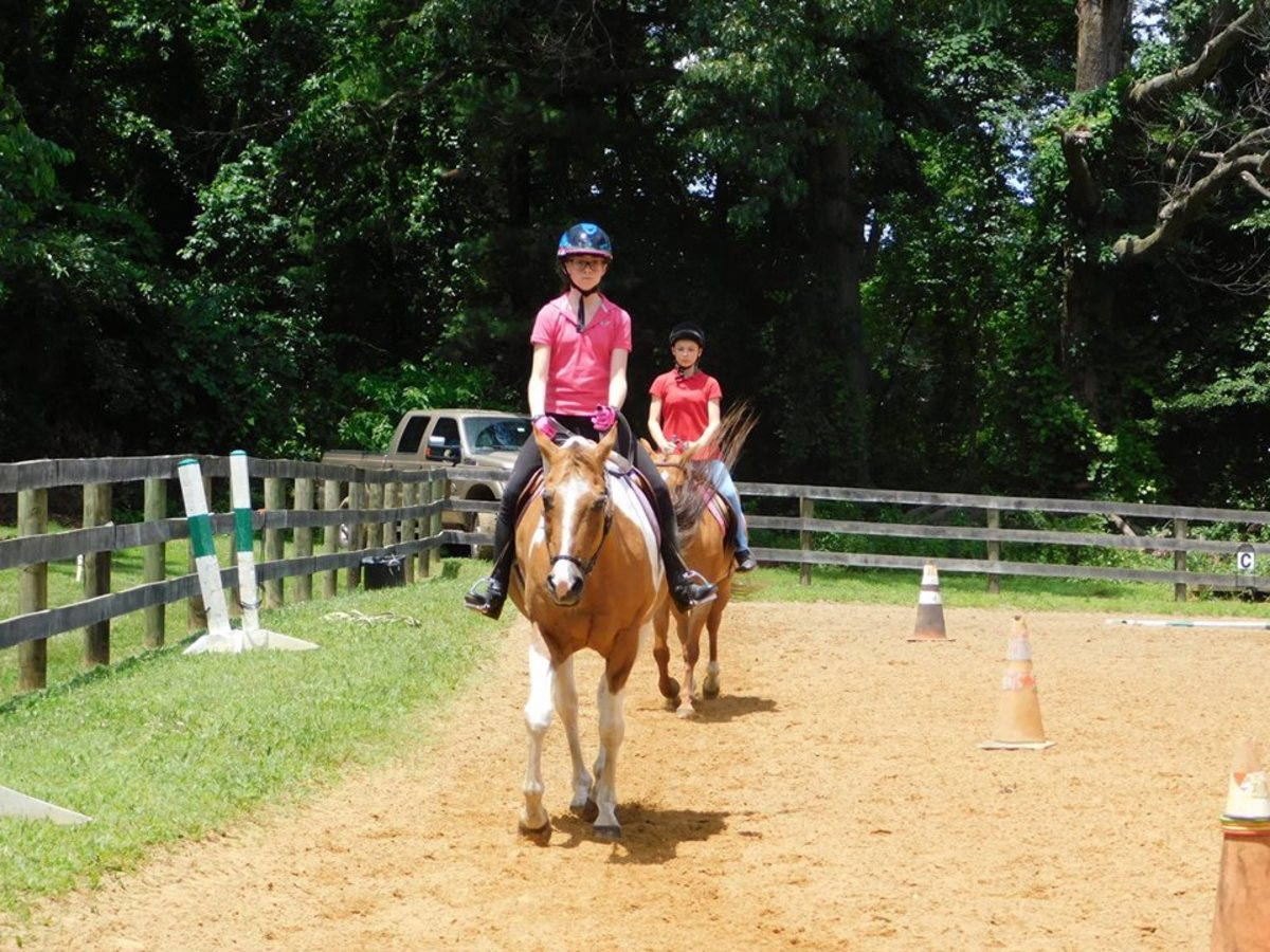 Riding in a show in the same ring they do their lessons in is quite a comfort to many new riders.