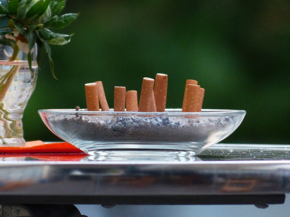 It's all too easy to forget the ash tray on the table. Make sure the cigarette remains stay out of pets' reach.