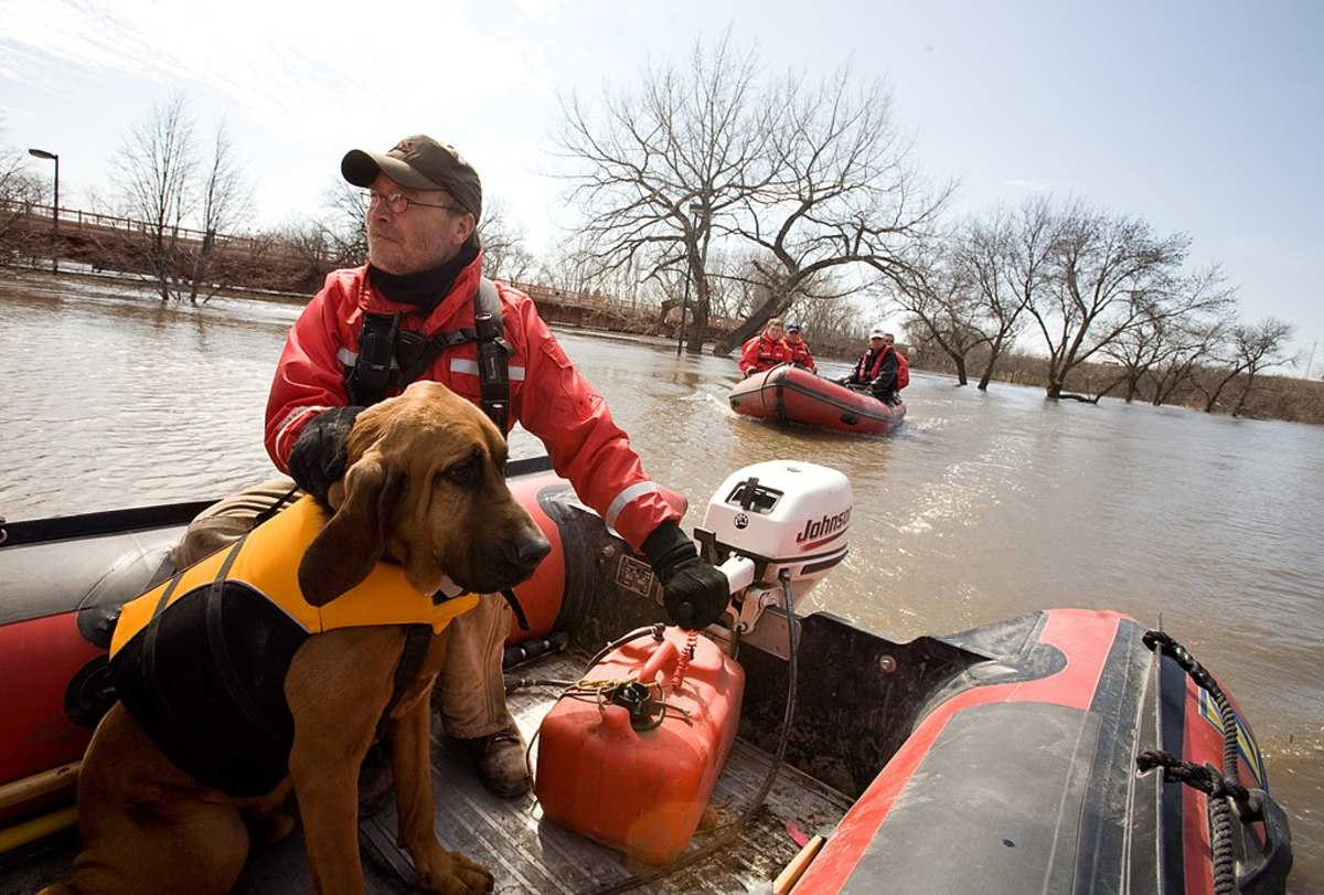 Barnaby, a skilled water-search dog, helps Mike Knorr look for a missing person in Red River