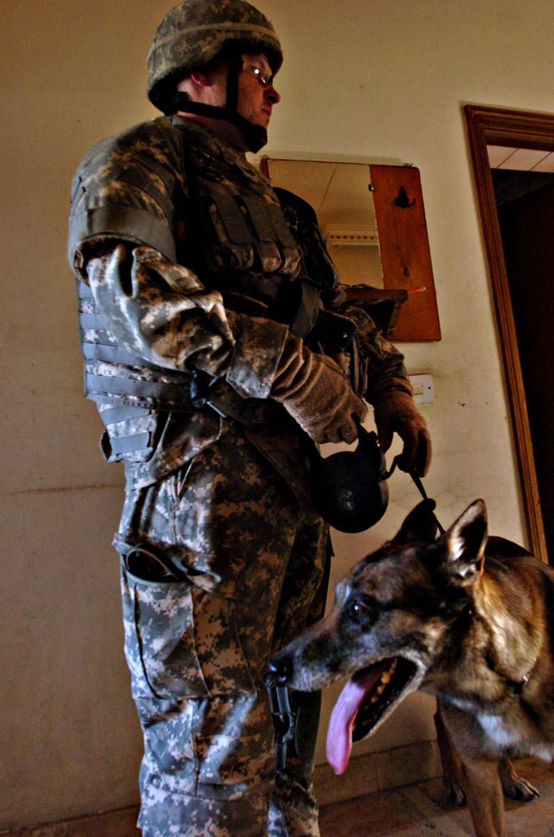 Zasko, pictured here with his military handler, is  an air-scent dog trained to detect explosives and works in war zones