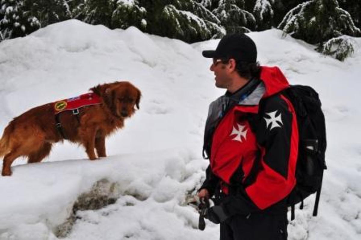 Murphy and his handler, Eric Seelenfreund, work together as part of an avalanche rescue team