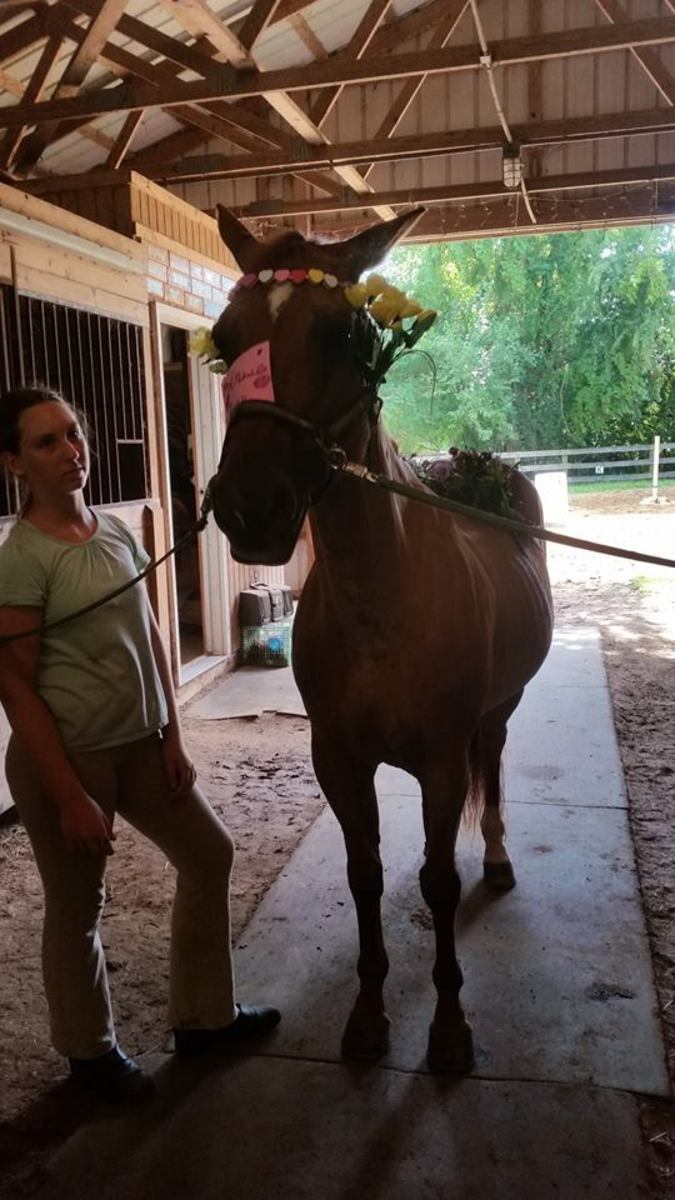 Don't blame the horse!! Considering all I put my horses through it's lucky they let us ride them at all!