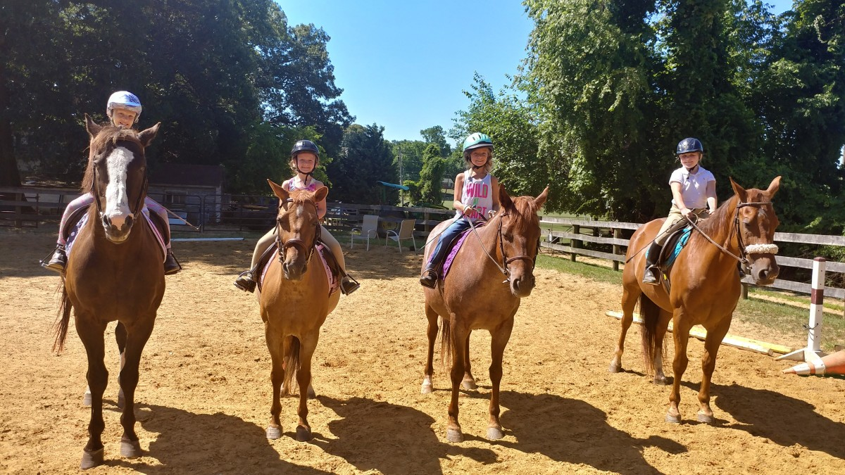 Lesson barns are filled with great horses who all have something to teach their riders. Don't let it ruin your whole lesson that you looked forward to all week just because you didn't get the horse you wanted. Embrace the learning opportunity!