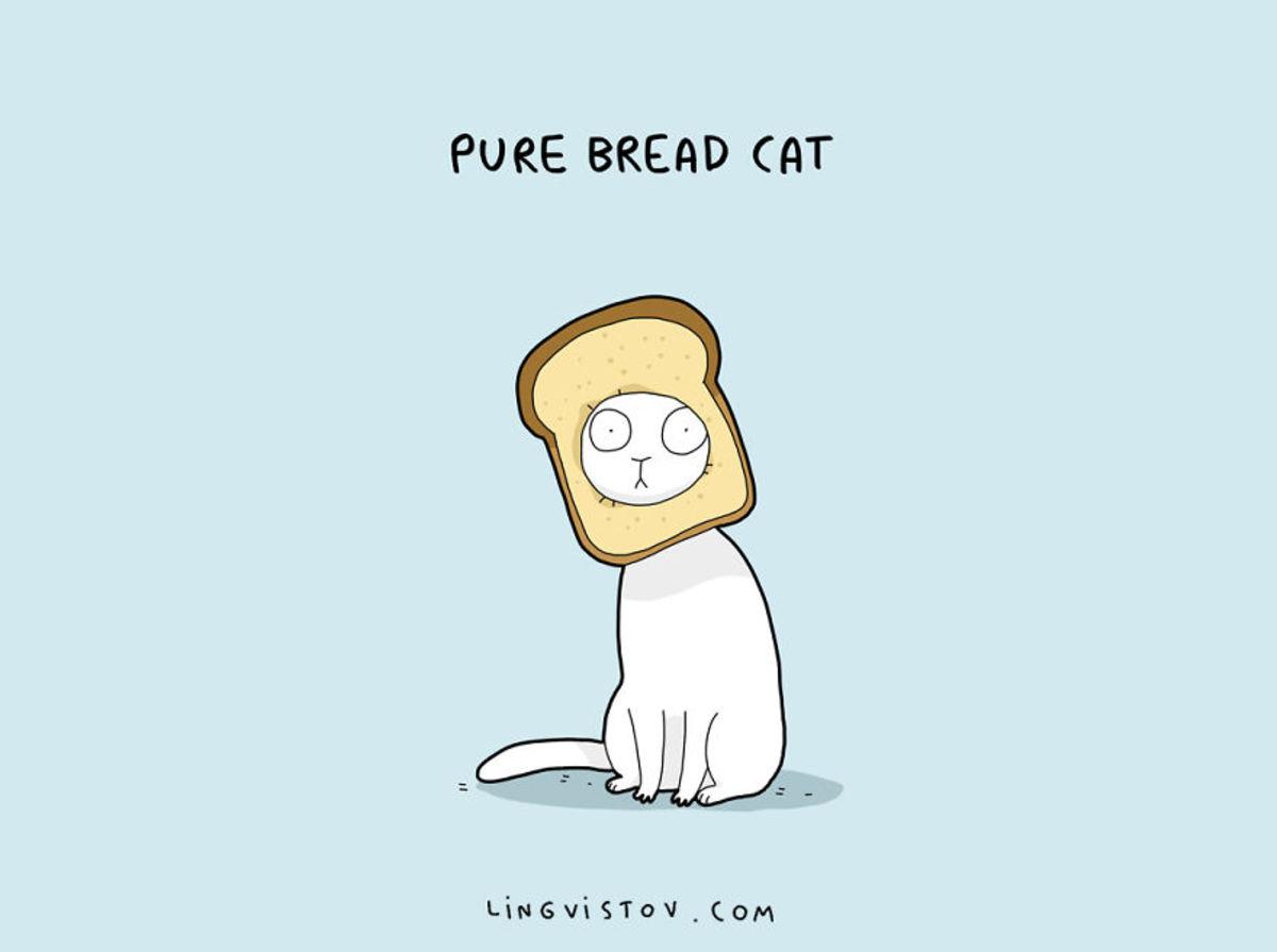 Hilarious Cat Pun!