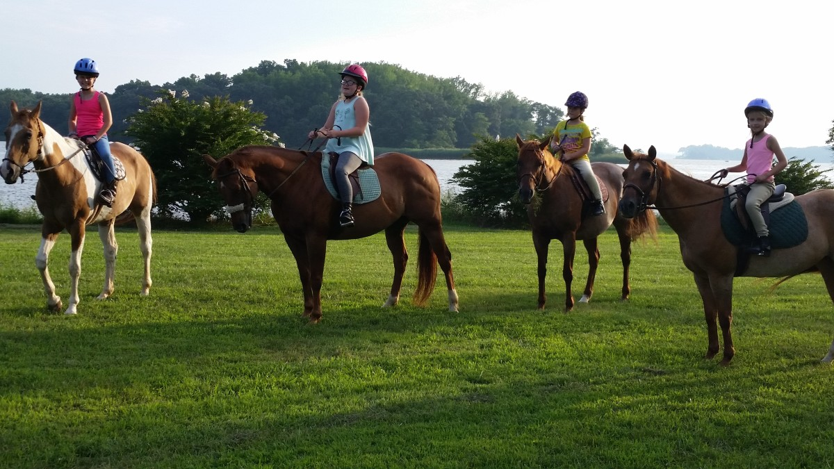 One benefit of leasing is that depending on how you arrange it, you may be able to ride a variety of horses.