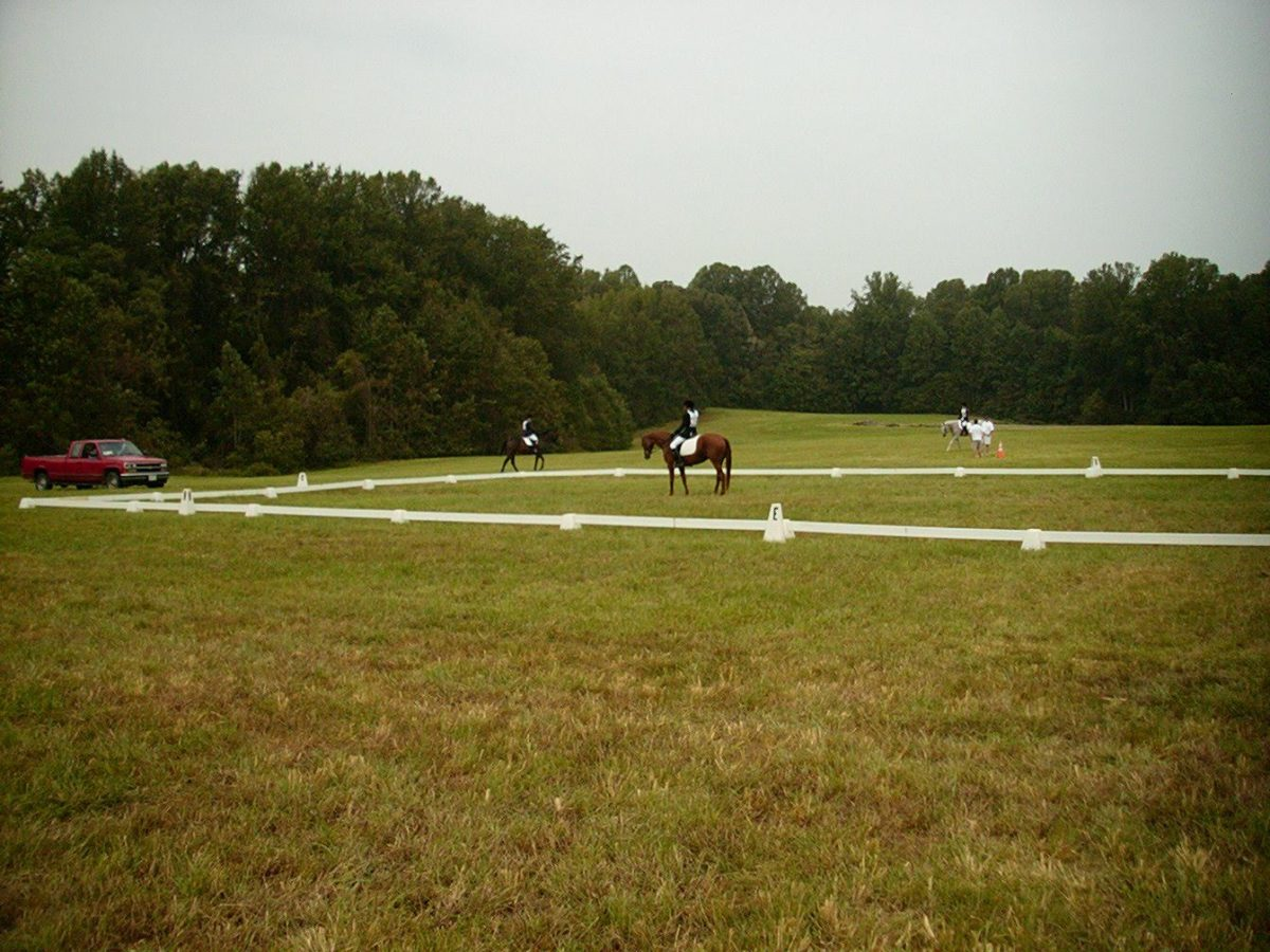 Zelda and I finishing up a dressage test at an event.
