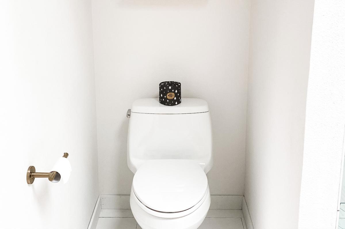 Do not flush cat poop down the toilet.