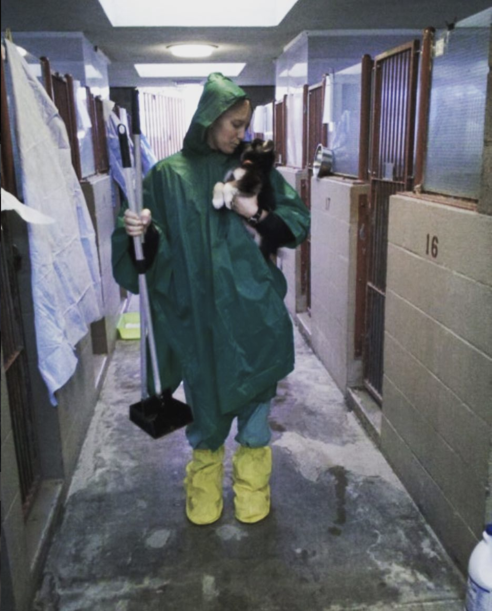 Me, when I was working my first job, over 10 years ago, at a shelter. Caring for a pup on a rainy day.