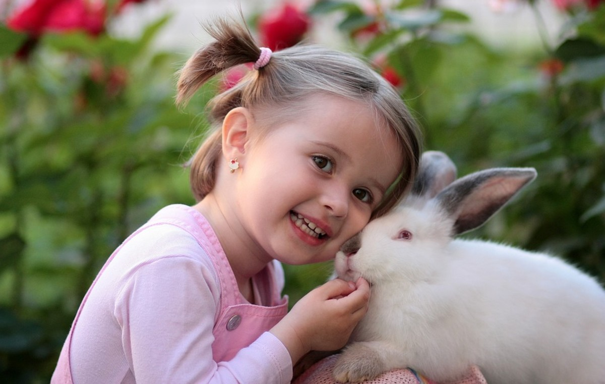 Children love and enjoy rabbits, but can accidently hurt this pet with hugs, play or incorrect lifting.