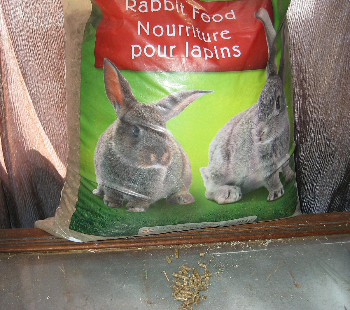 Rabbit pellets - a welcome treat for any rabbit.