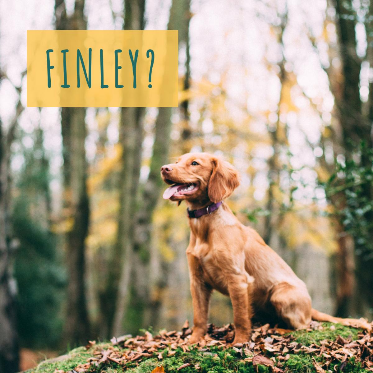 Is he a Finley?