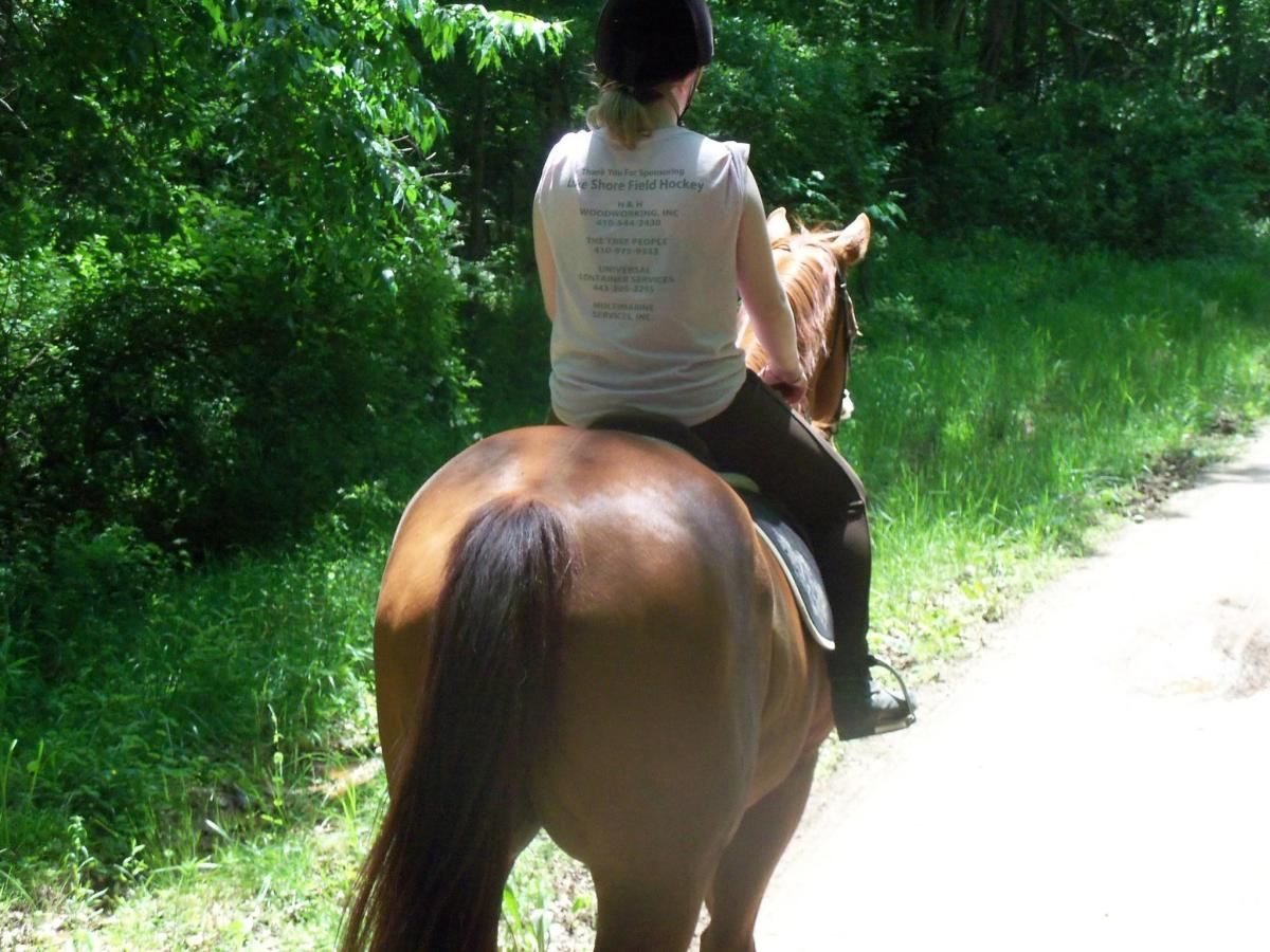 Horses feel our energy, so having calm, confident energy is a super important horsemanship skill.