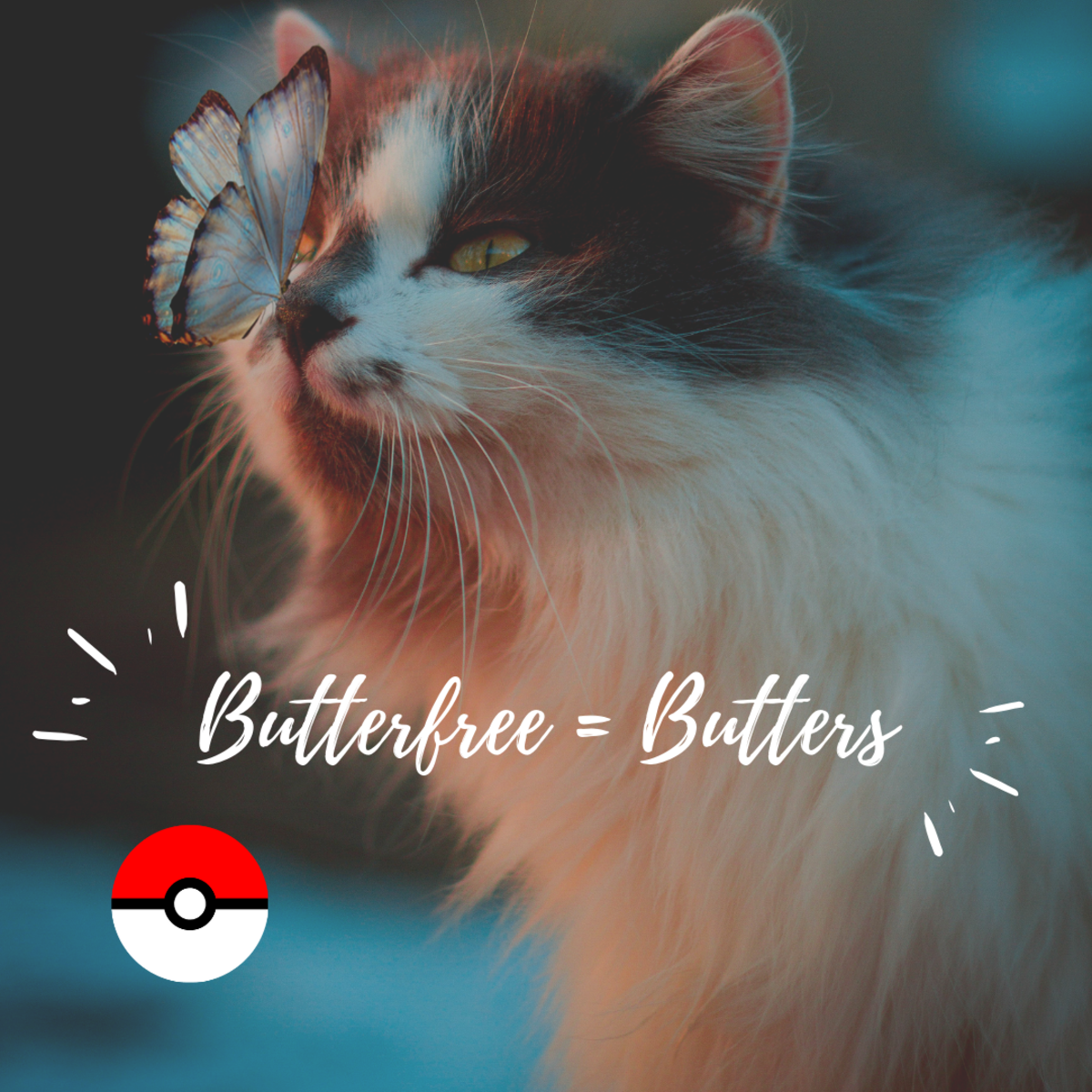Butterfree or Butters?