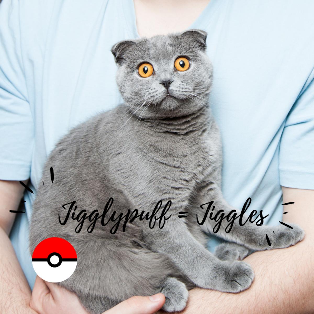 Jigglypuff or Jiggles