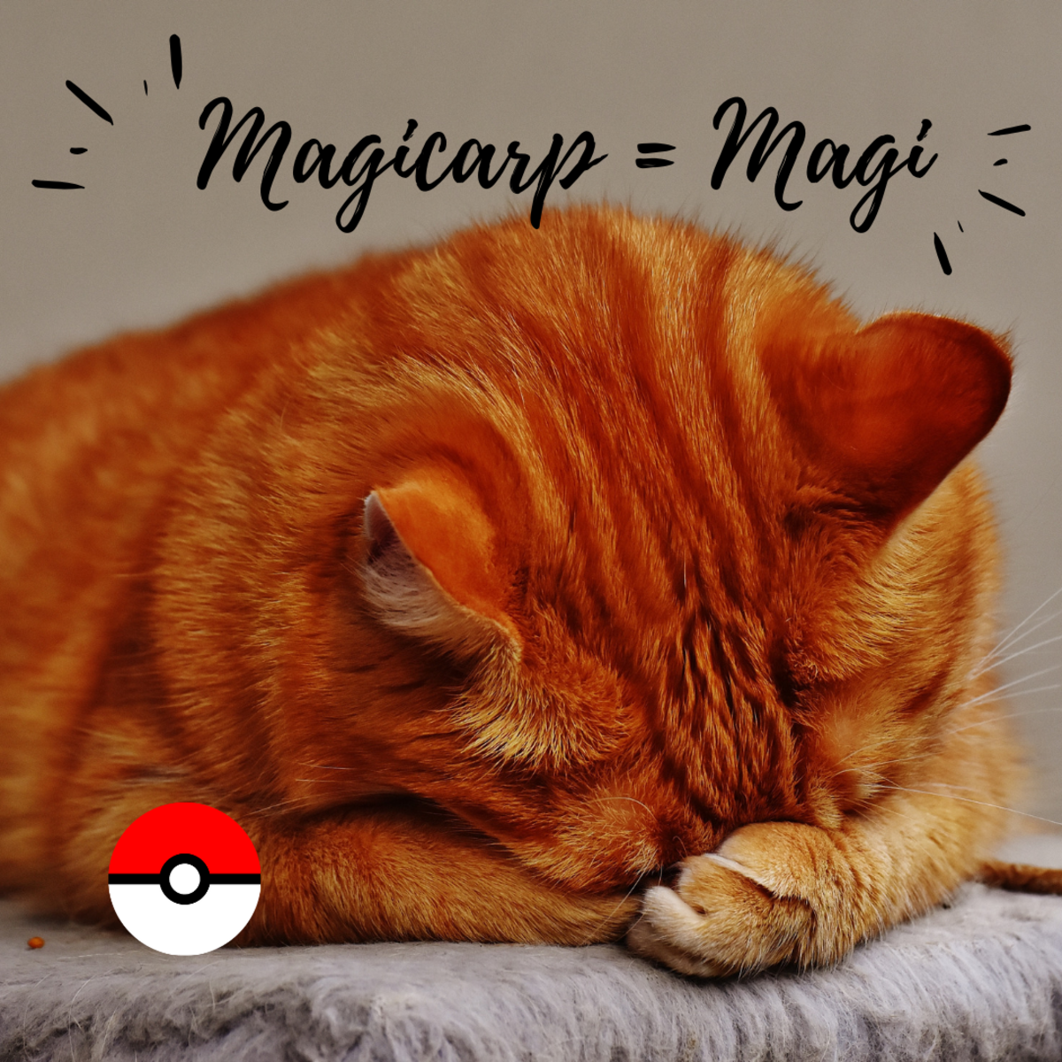 Is she a Maggy, Maggie, or Magicarp?