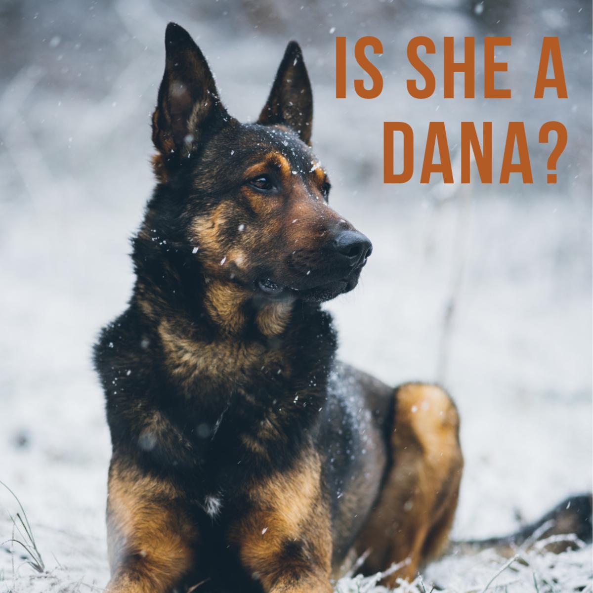 Is she a Dana?