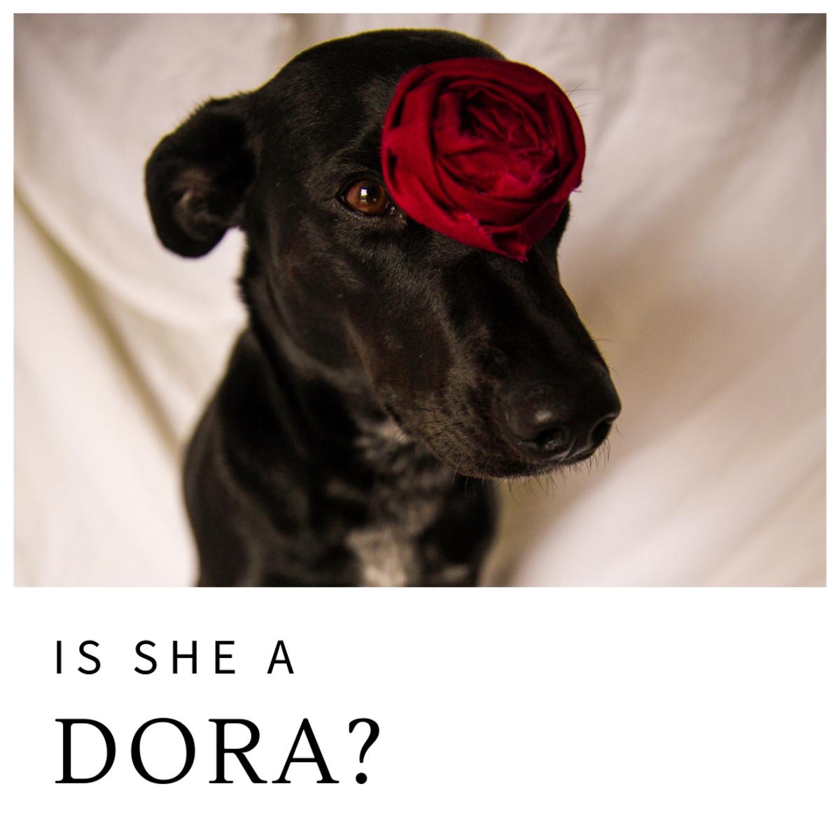Is she a Dora?