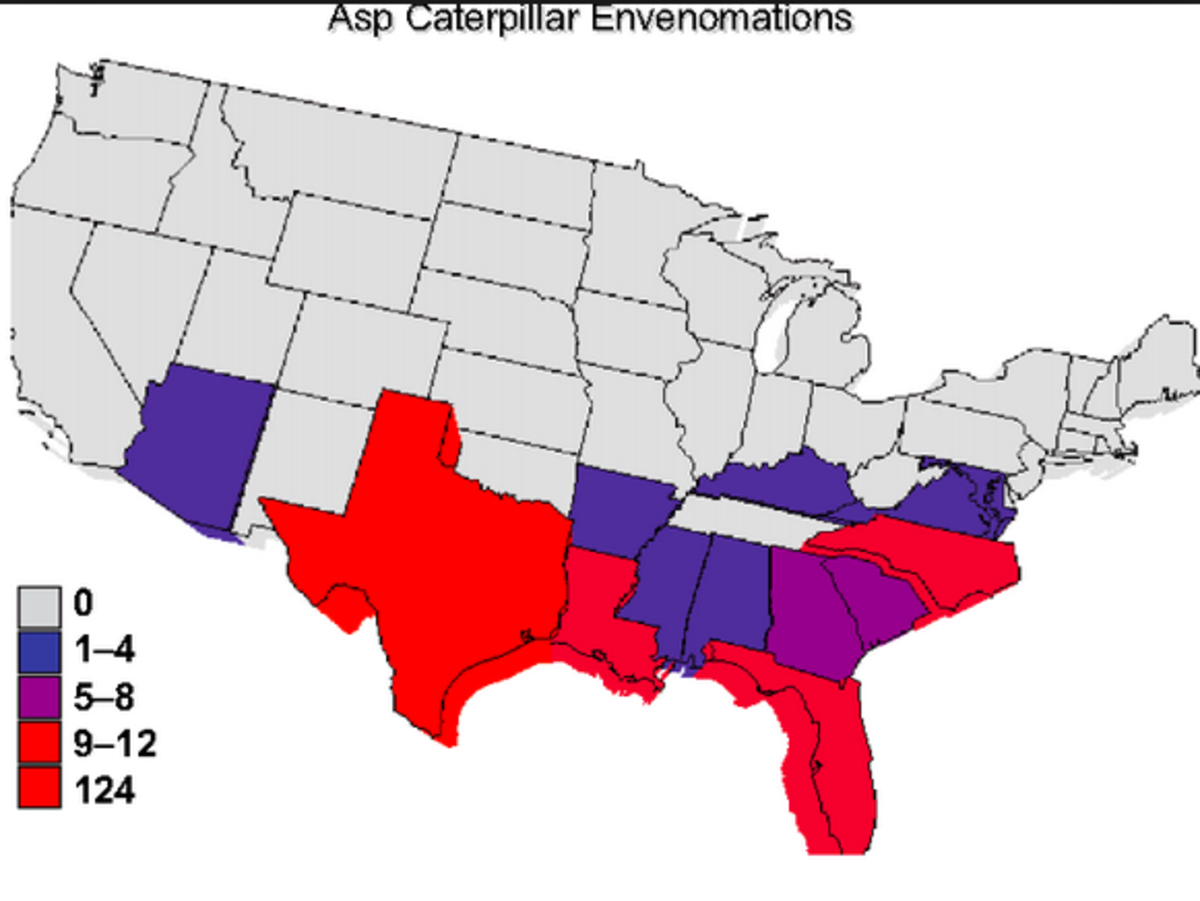 Here's Where Your Risk of an Asp Sting Is the Highest