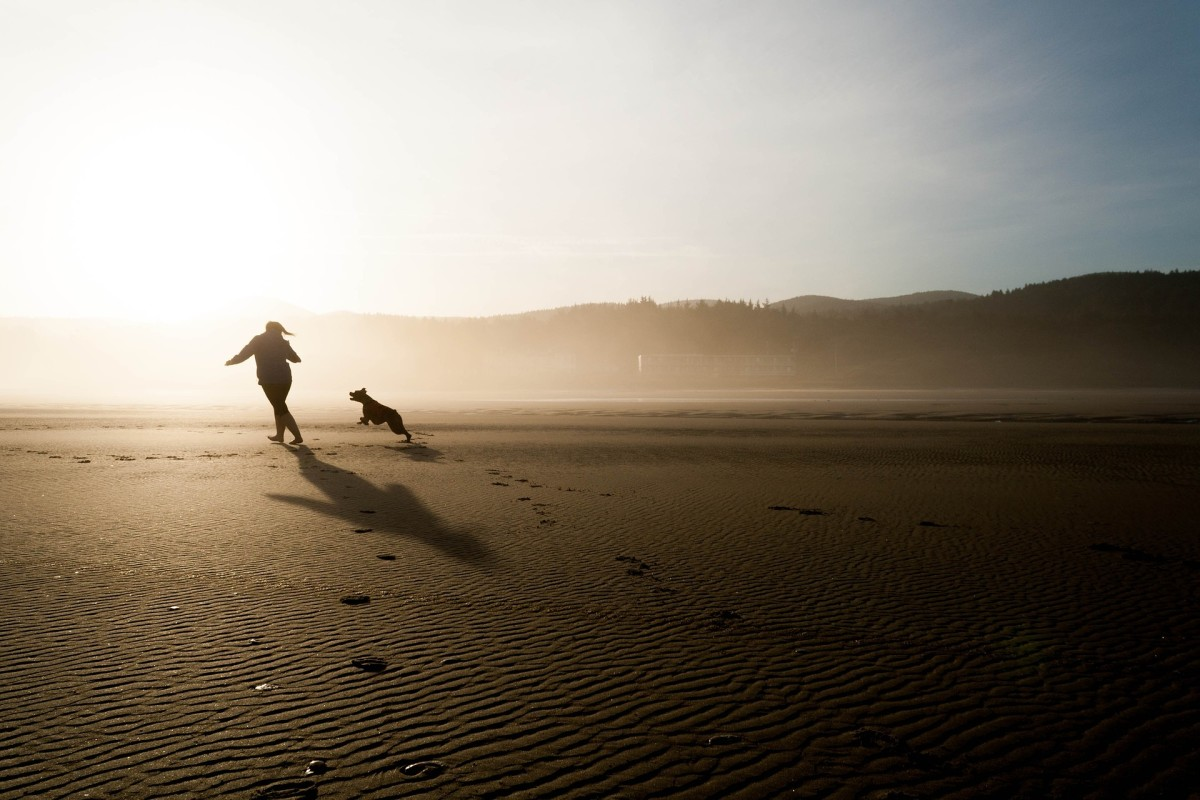 An uncrowded beach is an excellent place to let your obedient fun-loving dog play off-leash.